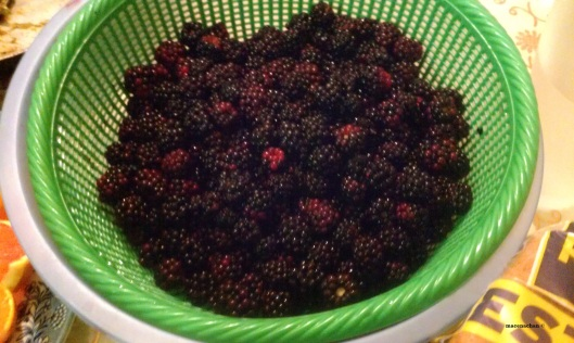 This is only a small portion of the blackberries I had to sort through yesterday