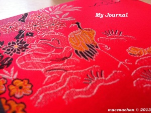 © 2013 My journal