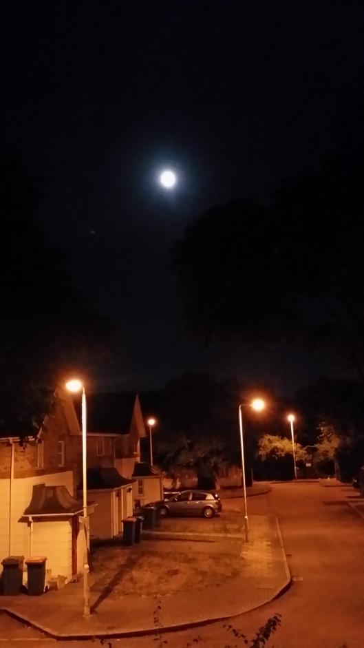 Day 16 - moonlight