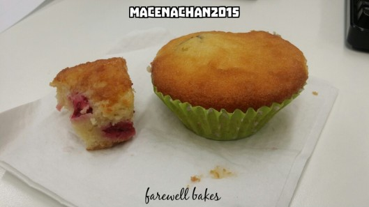 What she baked for us: raspberry and white-choco cake and blueberry  muffin.