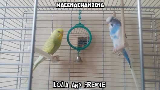 RD DAY 3 Lola and Freddie