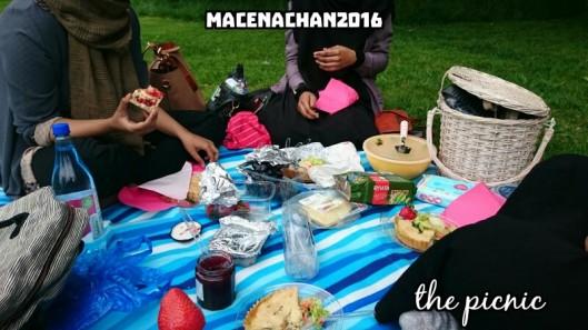 SH the picnic
